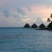 Тур экзотический Мальдивы фото
