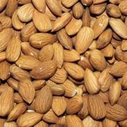 Almonds no shell фото