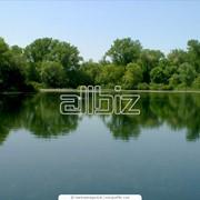 Очистка водоемов, очистка русла реки фото