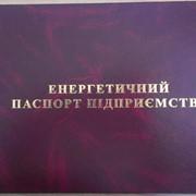 Разработка энергетического паспорта предприятия фото