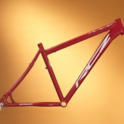 Велосипедная рама RCZ 012 Frame Race Disc 20 размер фото