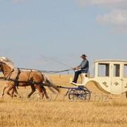 Кареты,экипажи,пролетки для лошадей и пони фото