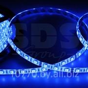 LED лента герметичная в силиконе, ширина 10 мм, IP65, SMD 5050, 60 диодов/метр, 12V, цвет светодиодов синий фото