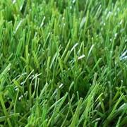 Искусственный газон 40мм монофиламент фото