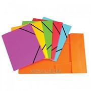 Папка на резинках, пластиковая, A4, economix, неоновые цвета E31633 фото