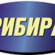 Прибирання прилеглих територій (Львів) фото