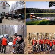 Услуги по содействию, развитию промысловой охоты. Охотничьи туры фото