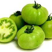 Помидоры зелёные фото