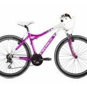 Велосипед Cronus EOS 1.0 женский фото