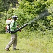 Защита растений  фото