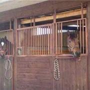Содержание лошадей фото