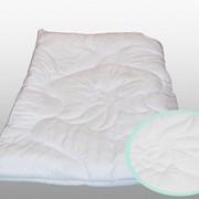 Одеяло Эвкалипт Премиум Темпере 172х205, чехол Lyocell фото