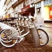 Прокат, аренда специальных велосипедов фото