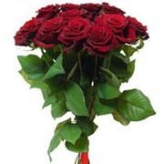 Букет цветов из 11 красных роз. Составление букетов и доставка фото