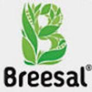 Поглотители запахов Breesal фото