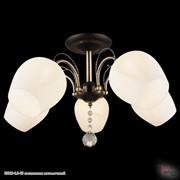 Reluce 03810-0.3-05 светильник потолочный фото