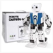 Человекоподобный робот DARwIn-MINI фото