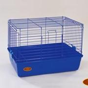 Клетки для кроликов и морских свинок. Клетка R1F фото
