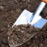 Подготовка почвы для посадки сада. фото