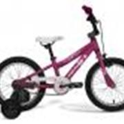 Велосипед детский Dakar Kids фото