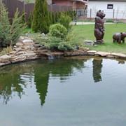 Садовый пруд строим фото