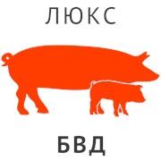 БВД КМ ССЛ-20% для свиноматок подсосных и II периода супоросности Эконом фото