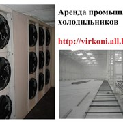 Аренда промышленного морозильного оборудования фото