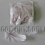 Перья серые 5-13 см 100 шт 3661 фото