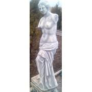 Венера Милоская фото
