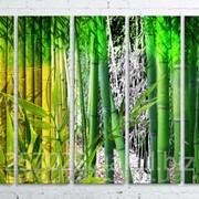 Модульна картина на полотні Бамбук код КМ100150(150)-245 фото