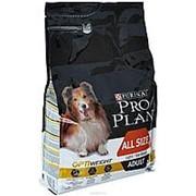 Pro Plan 3кг All size Adult Сухой корм для собак, склонных к избыточному весу или стерилизов. Курица фото