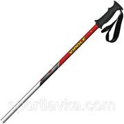 Лыжные палки Vipole Rental Alu 120 921883 фото
