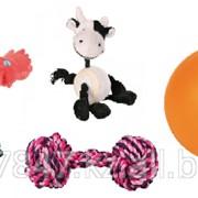 Игрушки для собак и кошек фото
