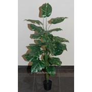 Растение искусственное в горшке, арт. 14х3 фото