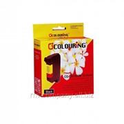 Картридж Colouring CG-C6615A-Bk для принтера HP фото