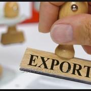 Анализ внешних рынков и поиск потенциальных покупателей. фото