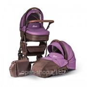 Коляска Anex Elana 2 в 1 Фиолетовый фото