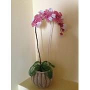Орхидея из бисера фото
