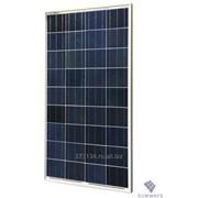 Солнечный модуль Sunways ФСМ-100П фото