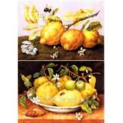 Декупажная карта Сочные лимоны фото