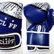 Перчатки боксерские RING 3028 (FLEX) синие, 14 OZ фото
