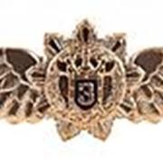 """Знак нагрудный ФСО Классность офицера """"3 степень"""" фото"""