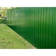 Забор из профнастила. Цвет ЗЕЛЕНАЯ МЯТА RAL 6029 высота 1,5м фото