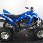 Квадроциклы Yamaha (MC) YFM350RT фото