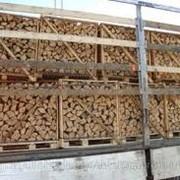 Дрова из твердых пород древесины: дубовые, буковые, грабовые. фото