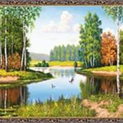 Гобеленовая картина 60х80 GS393 фото