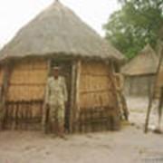 Сафари в Ботсване, Дельта Окаванго фото