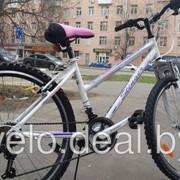 Женский велосипед Stinger Element lady купить в Минске фото