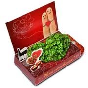 Моей половинке. Пальчики Живая открытка Happy Plant наборы для выращивания фото