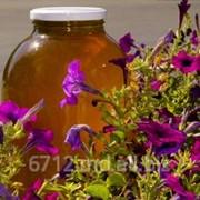 Мед из цветов акации фото